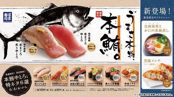 はま寿司のメニューPOP