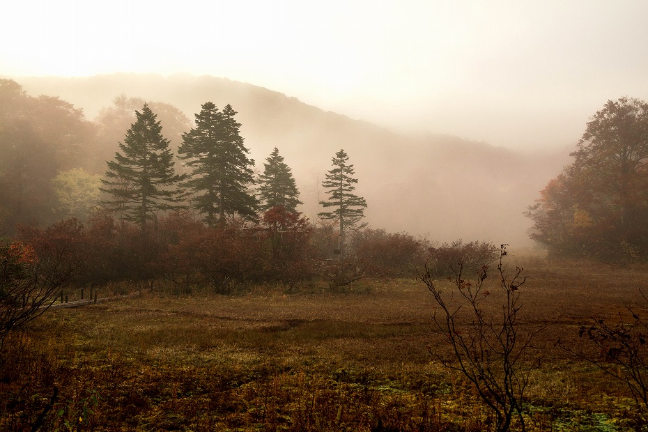 2017.10.14籾糠山_天生湿原~山頂.1