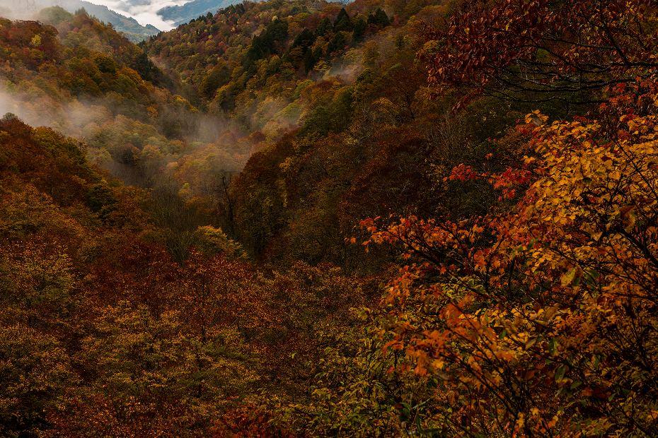 2017.10.17籾糠山.1
