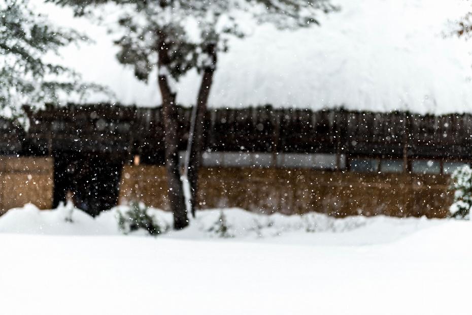 2017.12.13白川郷 降り続く雪 1