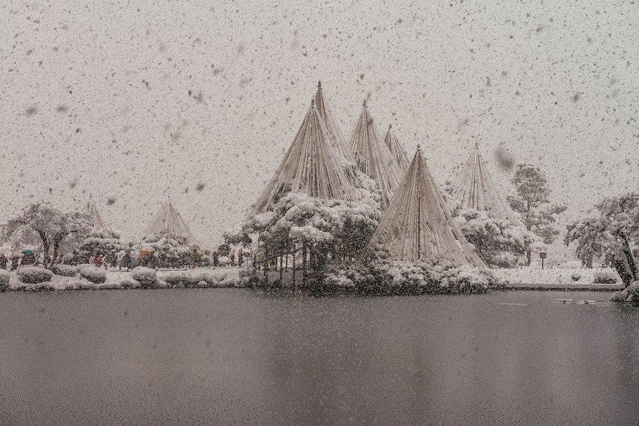 2017.12.17 雪景色の兼六園 5