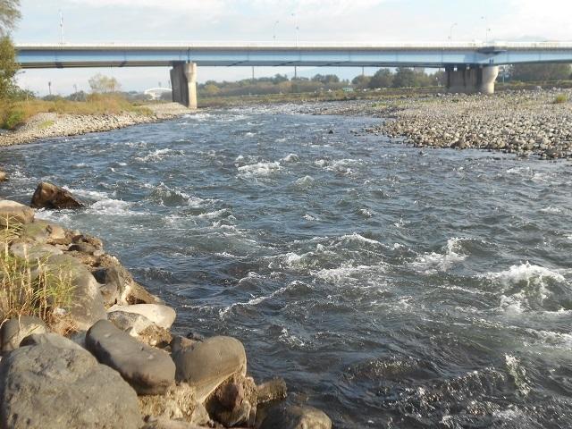 DSCN32131012大渡橋下流より上流を写す右岸.jpg