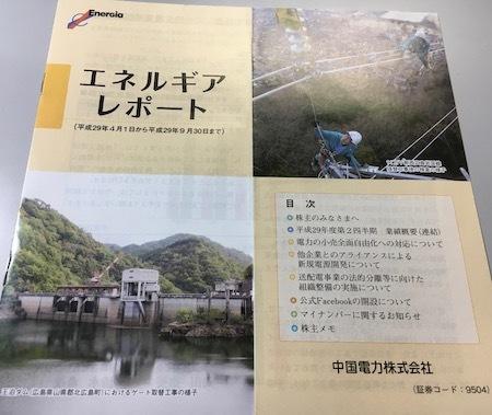 中国電力 エネルギアレポート