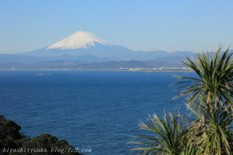 2760 江の島シーキャンドル-SN