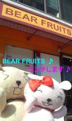 BEAR FRUITS ①1