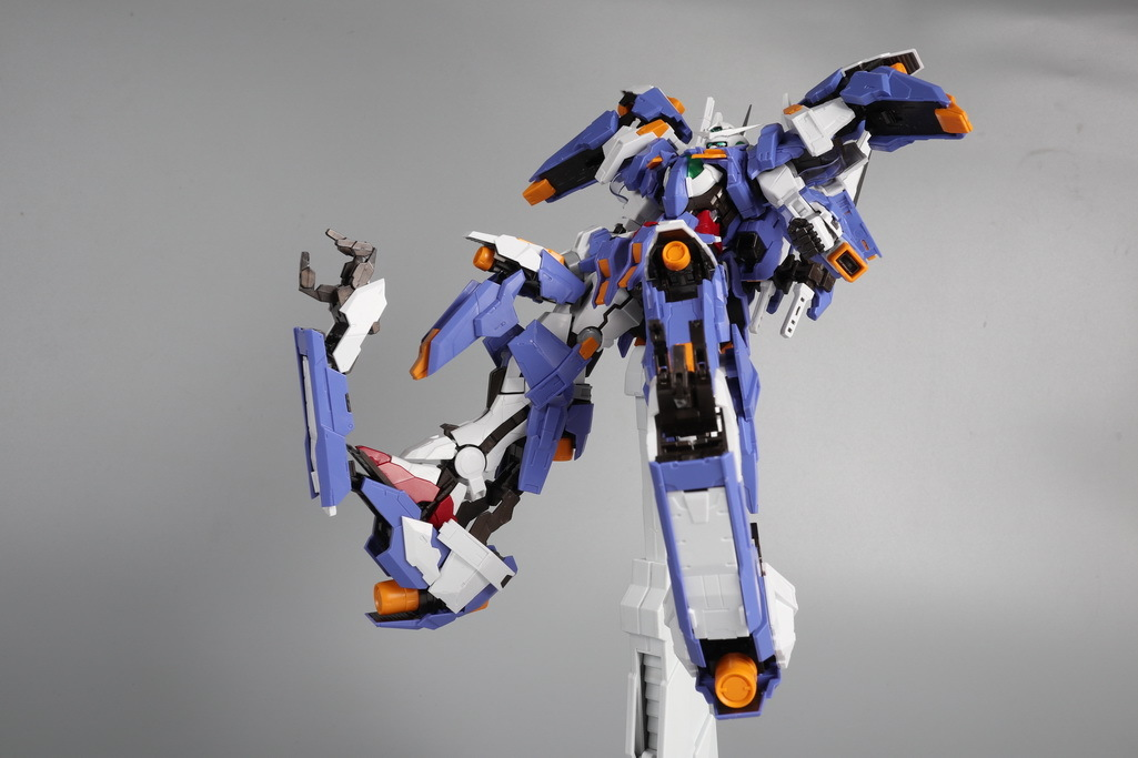 S206_daban_exia_review_inask_079.jpg