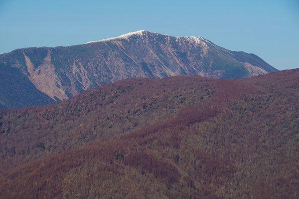 猫山から冠雪の早池峰