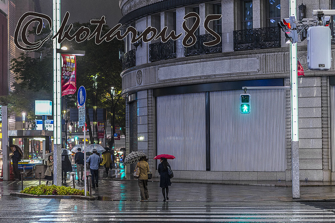 ハナキンも雨3 20171021