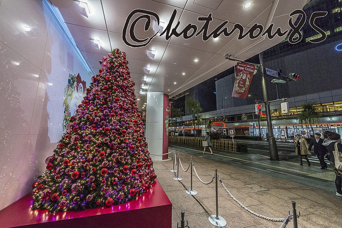 マロニエゲートのクリスマスツリー 20171117