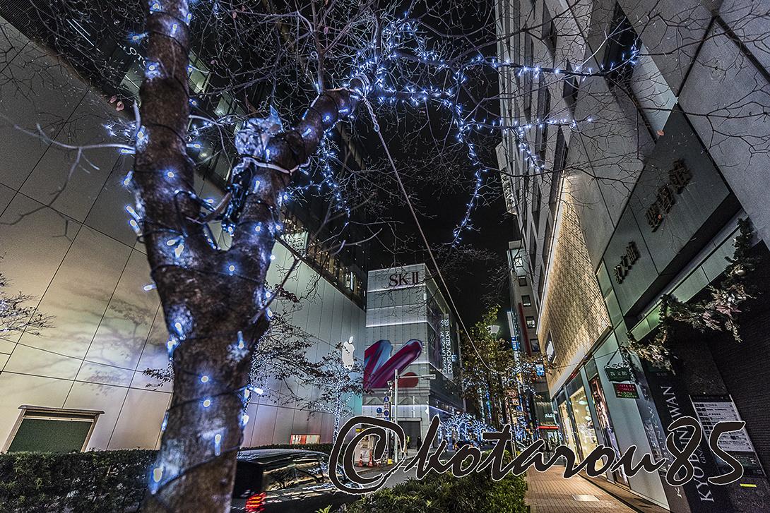 晩秋の松屋通り 20171128