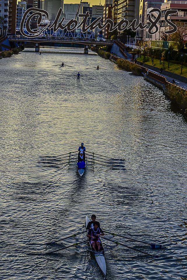 小名木川をすべるボート2 20171222
