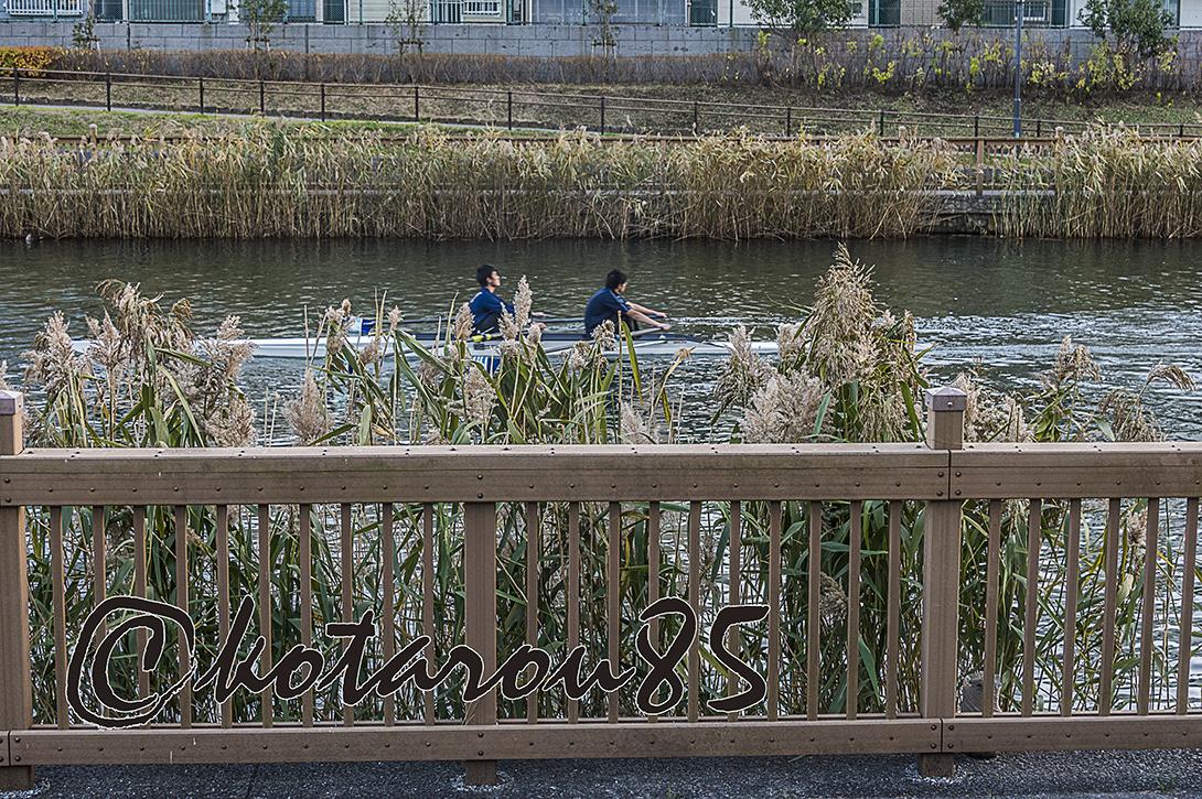 小名木川をすべるボート6 20171222