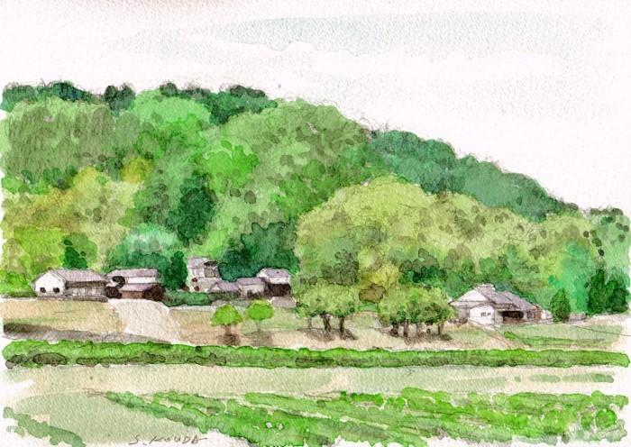 兵庫の里山2 (700x496)