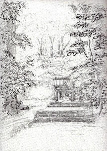 菩提寺の紅葉 デッサン (426x600)