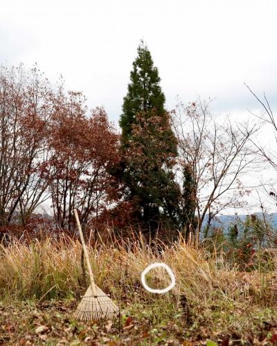 庭かやねずみ巣m995A1092