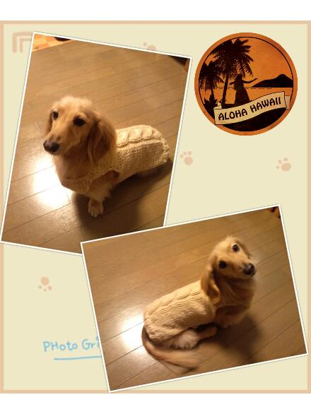 Masa&Peace-picute20121112183237.jpg