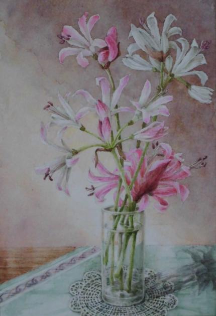 ネリネ 1711