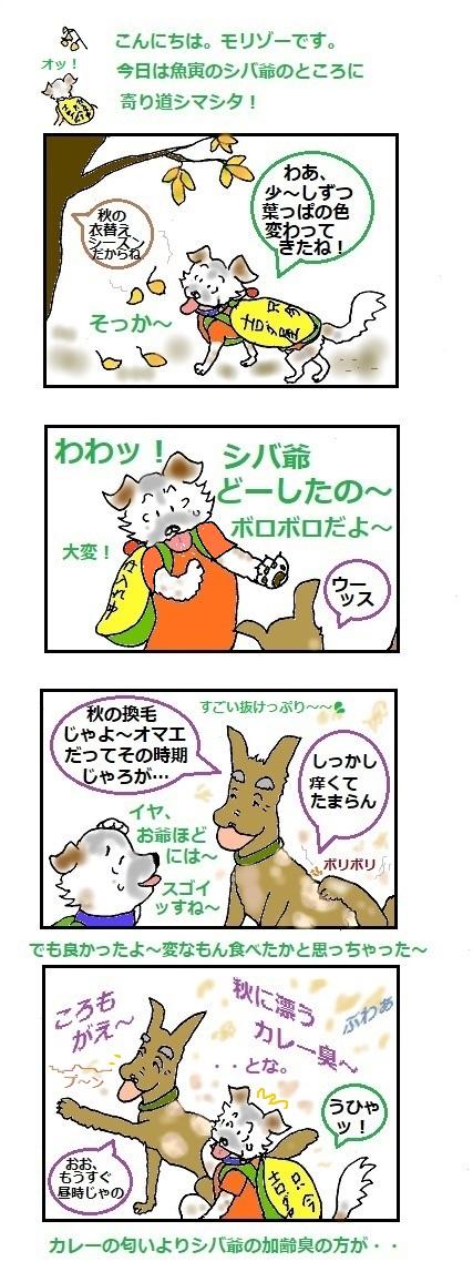 モリゾーちん243 衣替え~