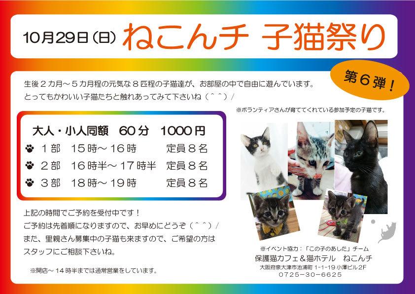 10月29日 子猫祭り チラシ