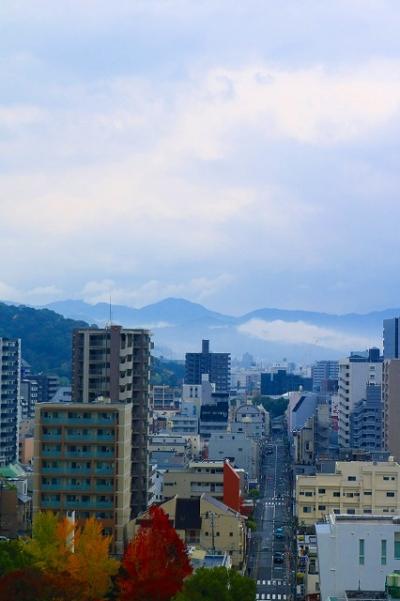 20171117_霧の朝IMG_6508cl100k-3℃