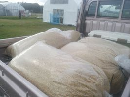 【写真】軽トラの荷台に積んだモミガラの袋