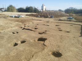 【写真】竪穴式住居の柱の跡