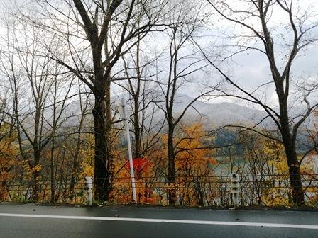 湖畔の新雪と紅葉
