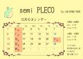 カレンダー17010月