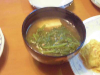 10.1大根の間引き菜の味噌汁