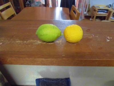 11.19レモンと柚子