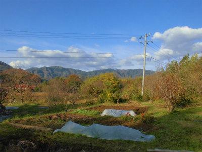 12.2晴れの日の畑