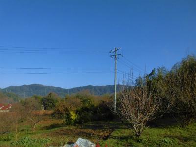 12.15空は青空