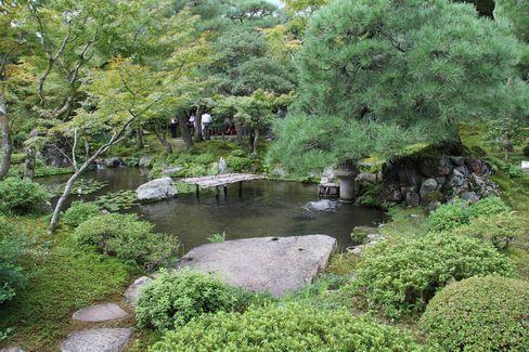 大寧軒・庭園の池_H27.09.10撮影