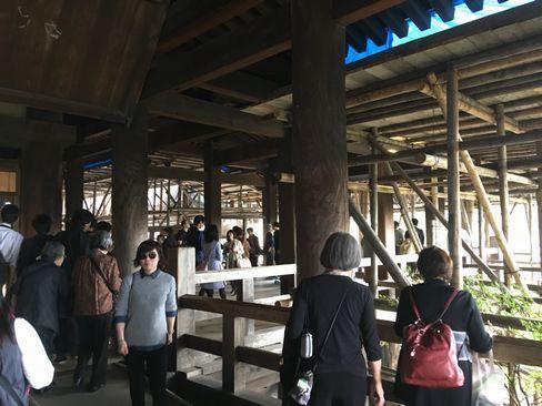 工事中の清水の舞台_H29.11.03撮影
