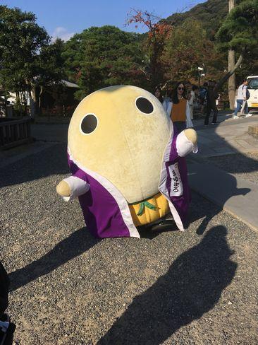 京都府広報監・まゆまろ_H29.11.03撮影