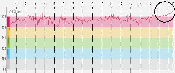 心拍数グラフ