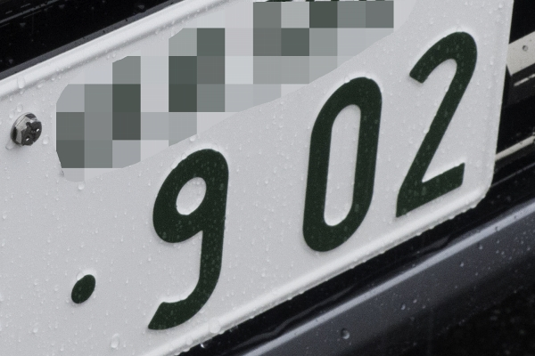 P1020453-1.jpg