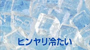 fujimotoyuki_icetroche_007.jpg