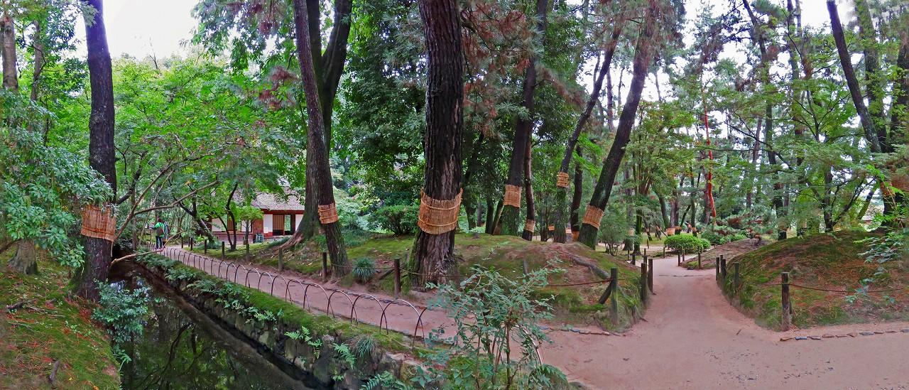 20171020 後楽園今日の園内水車付近から眺めた松林のワイド風景 (1)