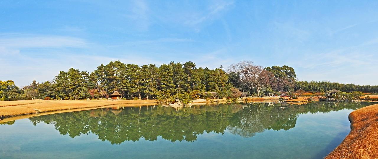 20171223 後楽園今日の沢の池越しに眺めた松林の映る園内ワイド風景 (1)