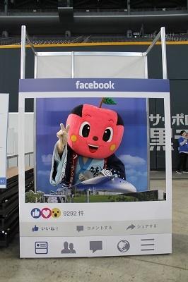 2017-11-23 ハッピーママフェスタ札幌ドーム (16)