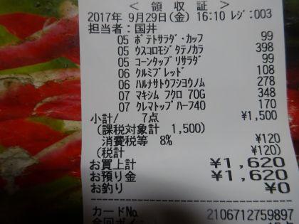 mini_DSC03372.jpg