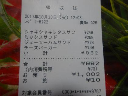 mini_DSC03511.jpg