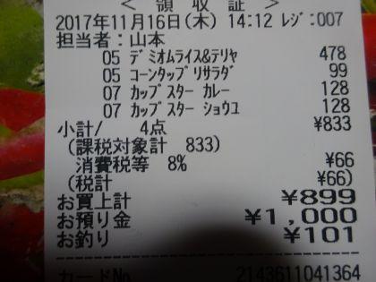 mini_DSC04052_20171116150726fef.jpg