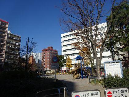 mini_DSC04337.jpg