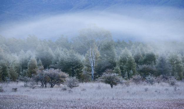 10月の小田代ヶ原
