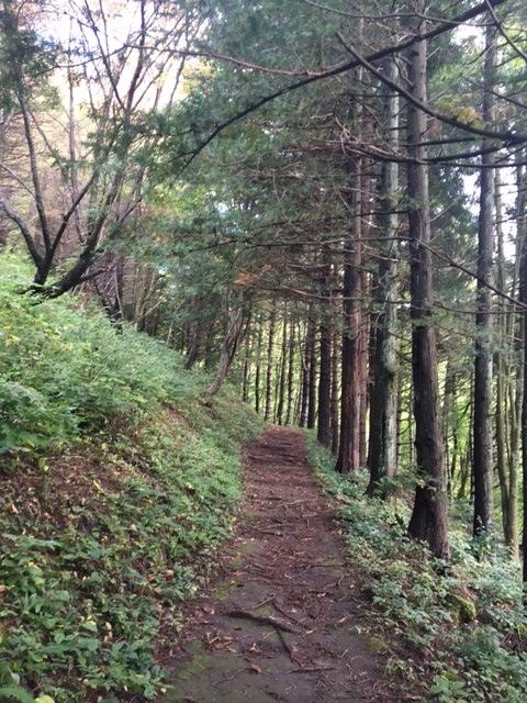 38-登山道