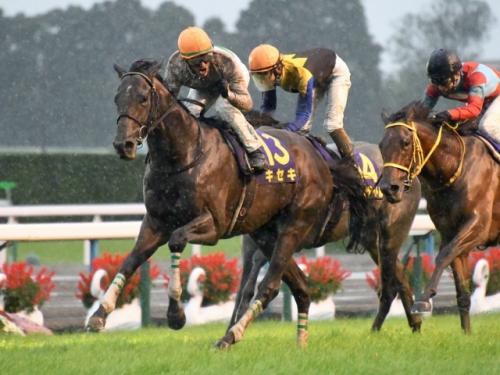 【競馬】菊花賞馬キセキはジャパンカップ、2着クリンチャーは有馬記念へ