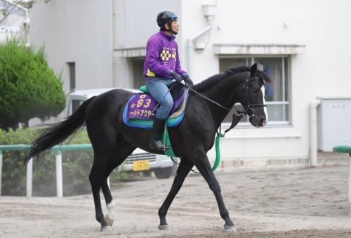 【競馬】ゴールドアクターは有馬記念に向かわず、アメリカJCCへ