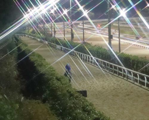 【有馬記念】武豊「有馬記念は客の目が血走っている。ダービーと違って、どこか悲壮感がある」